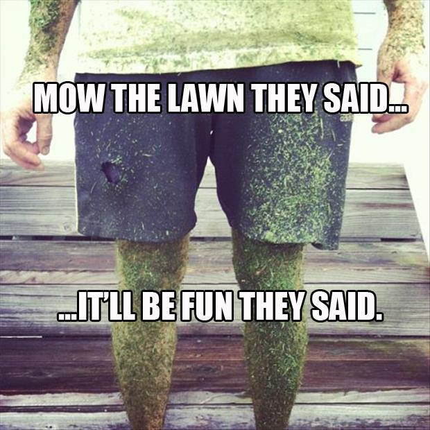 mow-the-lawn