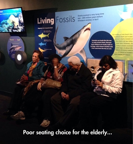 old-people-sitting-living-fossils