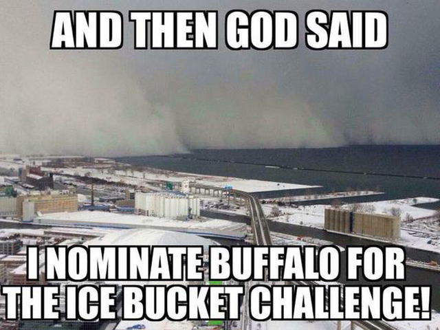 buffalo is going to cure ALS